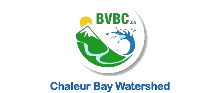 Chaleur Bay Watershed logo